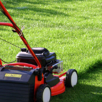Lawn Mowing Southfields